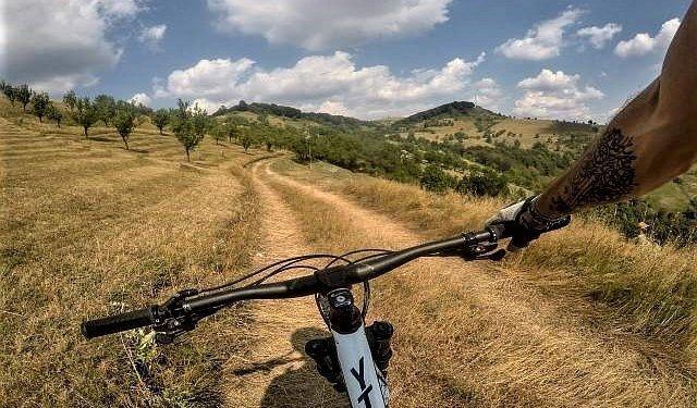 vistisoara mountain bike